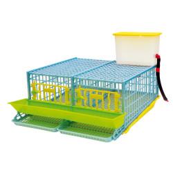 Cage pour caille pondeuses 2 compartiments