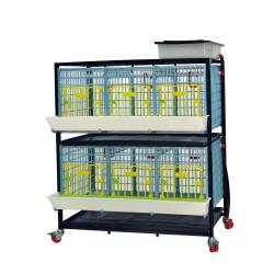 Cage croissance/engraissement pour volailles 2 étages